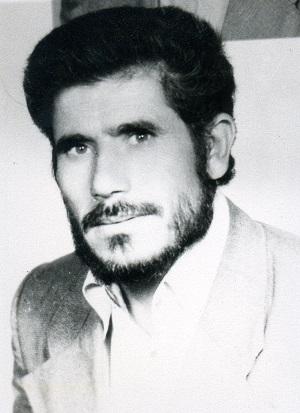 شهید محمدحسین تنها