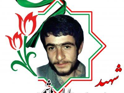 شهید سید عادل هاشمی