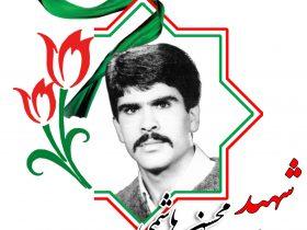 شهید محسن هاشمی