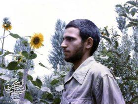 نامه شهید عباس محمدی در مورد اربعین