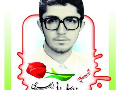 شهید رضا سلیمانی