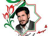 محمدحسین تنها